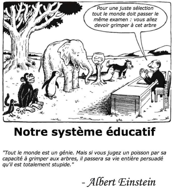 Albert Einstein et notre système éducatif