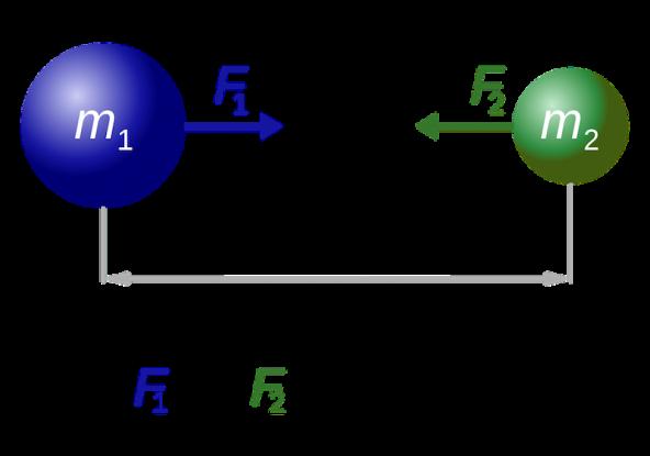 champs et interactions dans lunivers terminale s